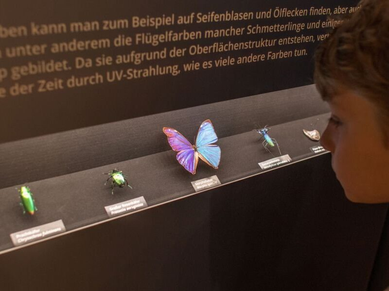 museumstag19_12